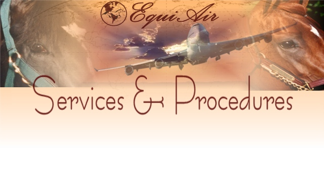 Horse Transportation Equine Air Shipping Services